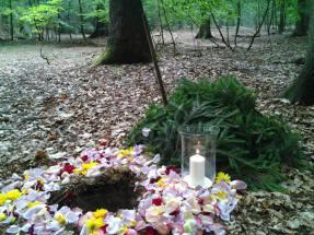 Eine Waldbestattung im Ewigforst Sachsenwald